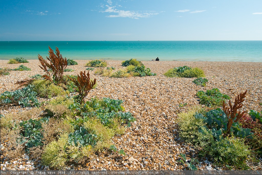 Shoreham Beach in the Spring